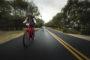 Speed pedelec Stromer in Top 10 bromfietsstatistieken