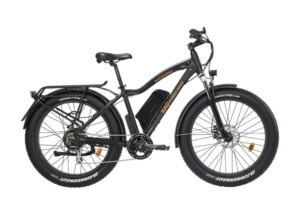 Rad Power Bikes met RadRhino e-bike op Bike Motion